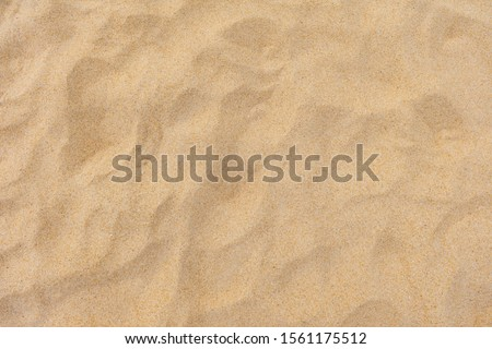 Texture of beach sand as background. Stock foto ©