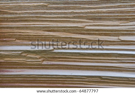 texture of cedar wood in natural - stock photo