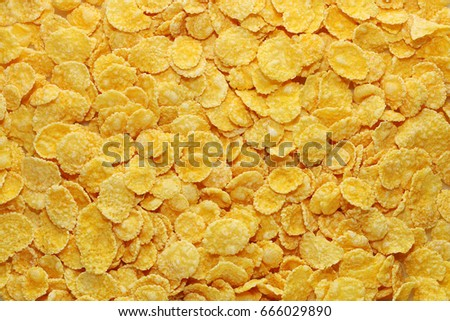 Texture of corn flakes #666029890
