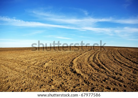Texture of cultivated field and blue sky.