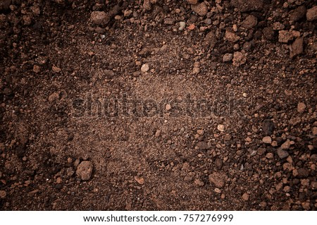 texture of dirt land stock photo