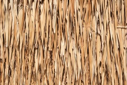 Texture of dried coconut leaves that overlap pile. Abstract background of dried coconut leaves.