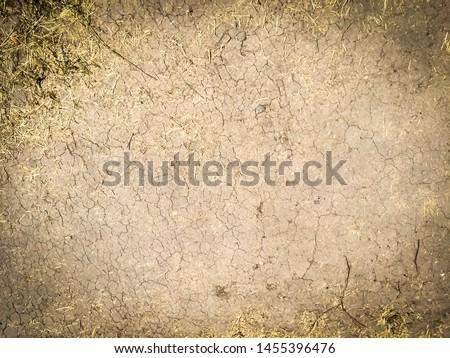 Texture of dry cracked earth. Desert background. Deep cracks on the ground. #1455396476