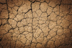 Texture of dry cracked earth. The desert background. The global shortage of water on the planet. Deep cracks in the brown land as a symbol of hot climate and drought.