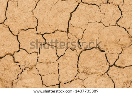 Texture of dry cracked earth. The desert background. The shortage of water on the planet. Deep cracks in the brown land as a symbol of hot climate and drought. Concept of global warming. Copy space. #1437735389