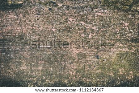 Texture of ebony. Wooden background #1112134367