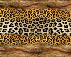 texture of fur fox and leopard