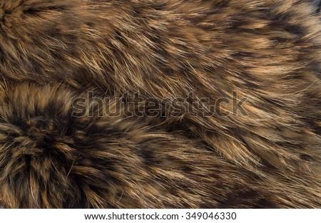 texture of fur - fox - high resolution #349046330