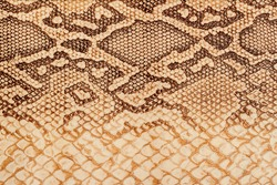 Texture of genuine leather close-up, embossed under the skin  a reptile, bright brown, background