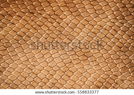 Texture of genuine leather close-up, with embossed scales  reptiles, the trend pattern #558833377