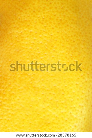 Texture of grapefruit skin.
