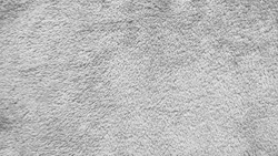 Texture of gray carpet background.