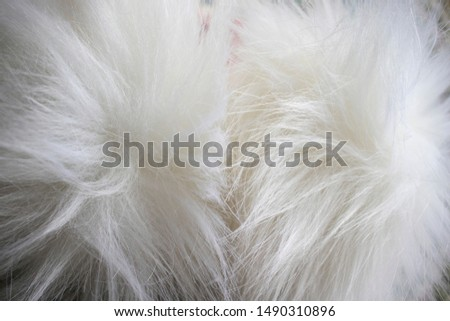 texture of long fur. White fur background, white fur. Copy space #1490310896