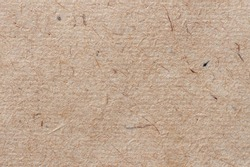 Texture of old ecological paper, cardboard close-up, recyclable material with various villi, fluff and other inclusions, grunge background, copy space