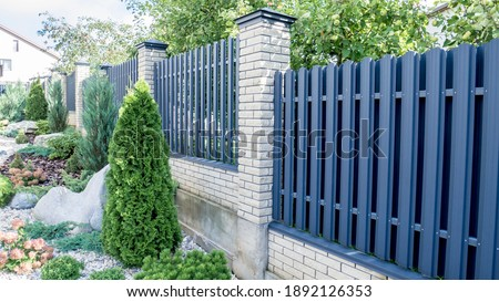 Texture of profiled metal. Metal fence. urban landscaping, beautiful thuja occidentalis on the background of a modern fence made of metal profile. Photo stock ©