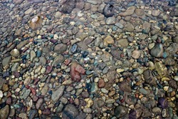 Texture of river pebbles in shallow water. Gravel under the river water.