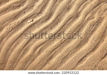 texture of sand. footprints in the sand.