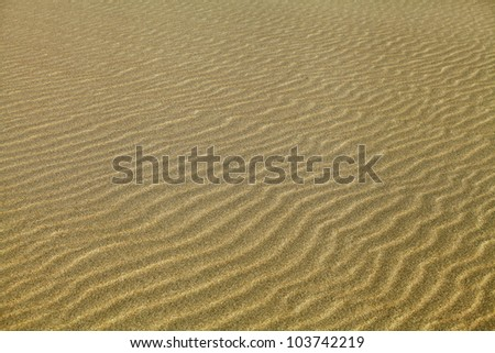Texture of sand rippled with the wind