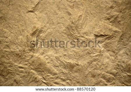 Texture of stone #88570120