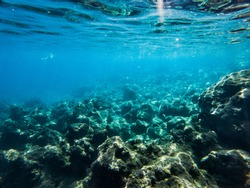 Texture of stones, earth, seabed with coral reefs and algae under blue-green water, underwater sea view, ocean in a tropical resort. Mediterranean sea. Greece. Background
