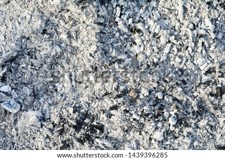Texture of the ashes. Natural gray background of burnt wood. Burnt coals. #1439396285