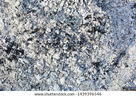 Texture of the ashes. Natural gray background of burnt wood. Burnt coals. #1439396546