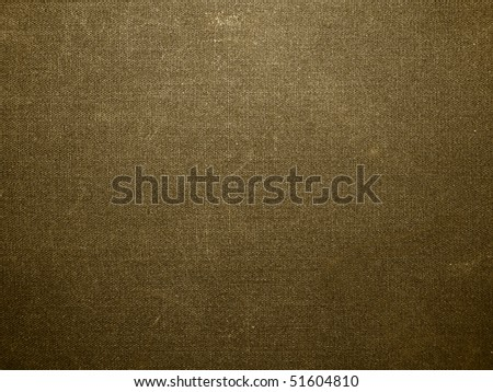 texture of the canvas #51604810