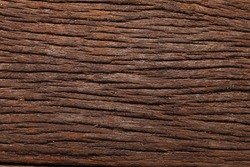 texture of the plank wood
