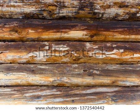 texture of the wall of logs burned by the sun