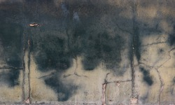 texture of wet concrete wall with green humidity blurred marks - moisture backgrounud surface for a wallpaper