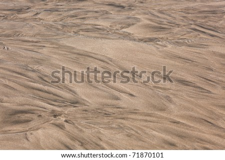 Texture of wet sand on the beach on sunny day.