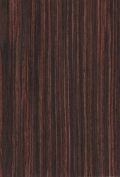 Texture of wood ebony veneer for the interior