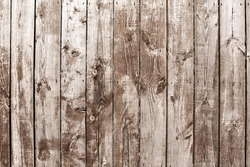 Texture. Old gray barn board as a background.