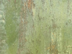 Texture painted rusted metal, colored background with iron fence. grunge green-yellow old dirty abstract Background. Oxidized Metal olive and iron oxide texture.