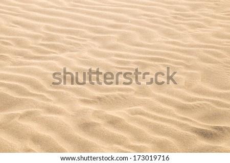 Texture Sand Dune Desert in Gran Canaria Island Spain