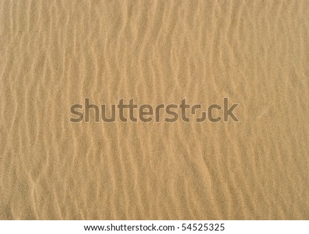 Texture - sandy surface with the ripples formed by wind