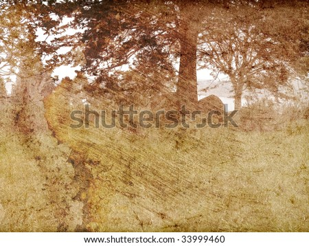 Texture vintage landscape clearing trees and bay