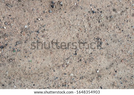 Texture with small stones. Background with small stones.