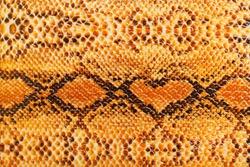 Texture yellow snake skin. Natural heart
