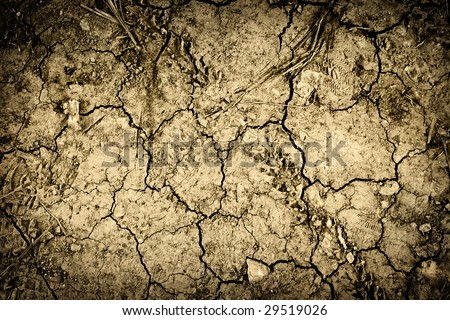 Textured background of cracked dry brown earth