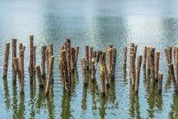 Textured background of the many old stakes standing on the clear green and blue sea