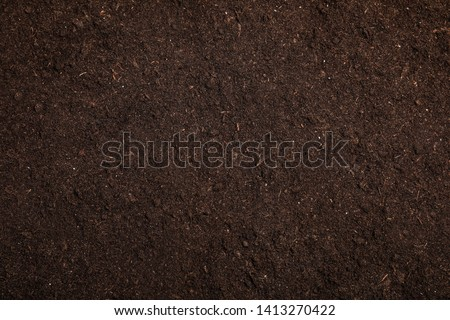 Textured fertile soil as background. Gardening season