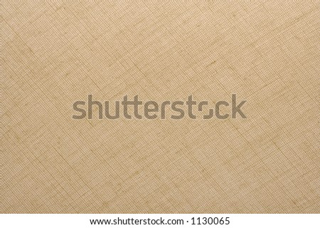 Textured Natural Tan Linen Fabric Background