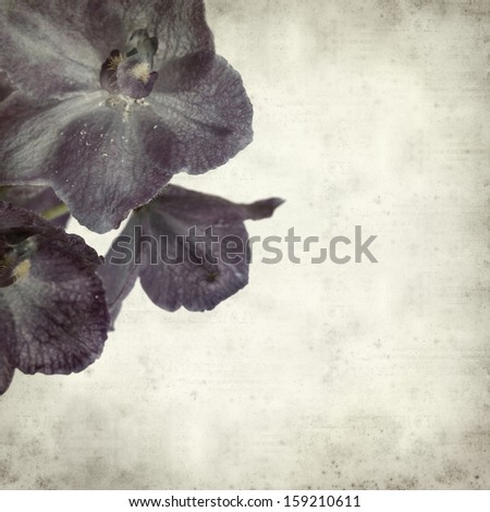 textured old paper background with delphinium #159210611
