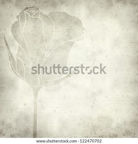 textured old paper background with hand-drawn picture of rose