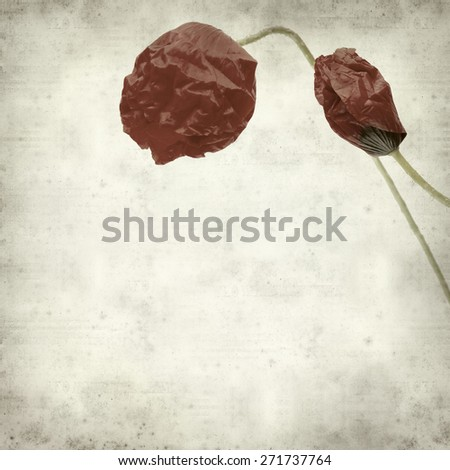 textured old paper background with opening poppies