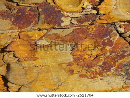 Textured rock background - North California coast