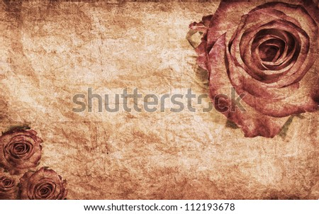 Textured rose on old paper grunge background