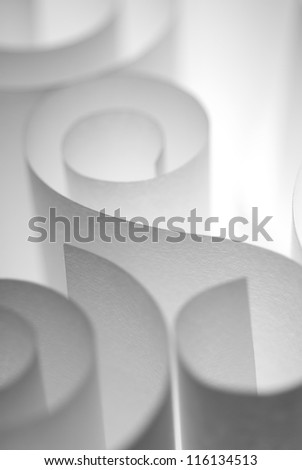 Textured white paper curls under soft light