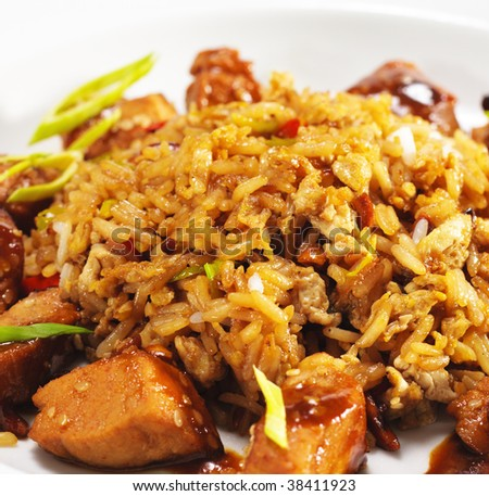 "Thai Dishes - Pork with ""Curry"" Sauce and Fried Rice"